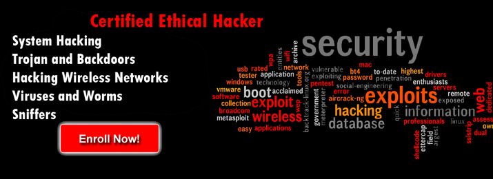 Certified Ethical Hacker | CEH Courses in South Africa ...
